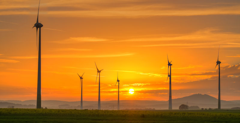 Sunrise over windmills and a field